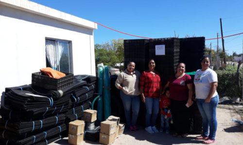Apoya Gobierno del Estado a más de 120 proyectos de cultivo de ostión en toda la entidad